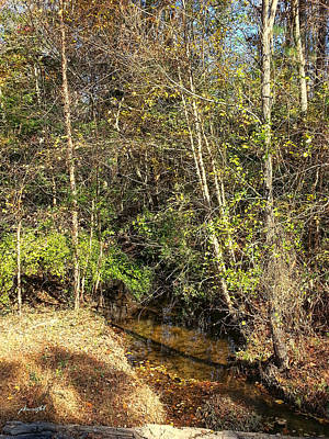 Photograph - Autumn Creek by Paulette B Wright