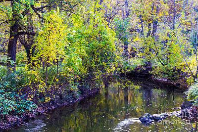 Photograph - Autumn Creek by William Norton