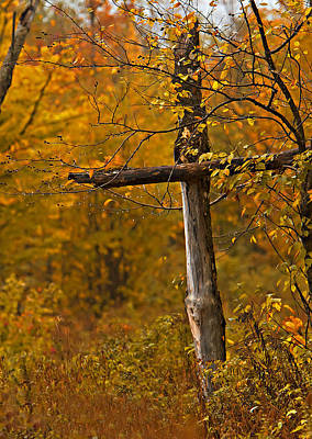 Autumn Cross Art Print