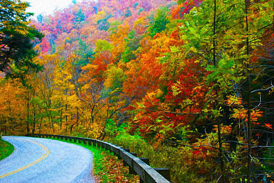 Autumn Curve Art Print by  Vince Maggio