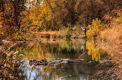 Photograph - Autumn Day by John Johnson