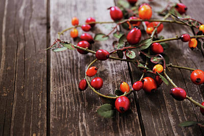 Photograph - Autumn Decoration With Rose Hips by Moncherie