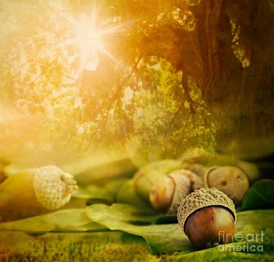 Autumn Design Print by Mythja  Photography