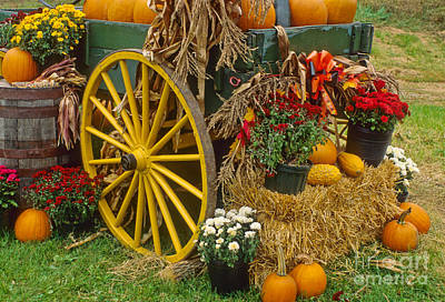 Photograph - Autumn Display by Richard and Ellen Thane