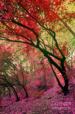 Photograph - Autumn Dreams by Tara Turner
