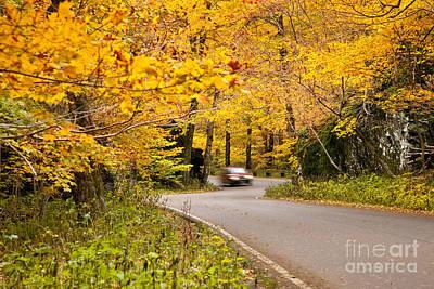 Photograph - Autumn Drive by Brian Jannsen