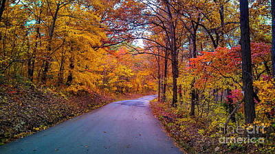 Autumn Peggy Franz Photograph - Autumn Drive  by Peggy Franz