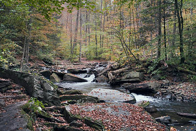 Photograph - Autumn Drizzle On Kitchen Creek by Gene Walls