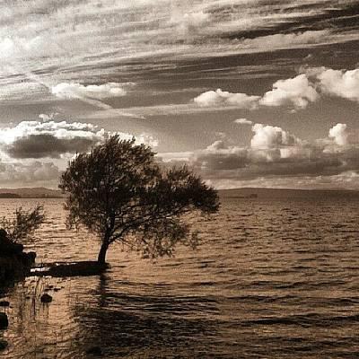 Follow Photograph - Autumn by Emanuela Carratoni