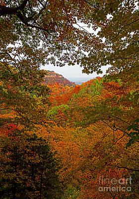 Photograph - Autumn Escarpment by Barbara McMahon