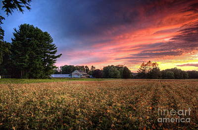 Inspirational Art Display Photograph - Autumn Evening by Marcel  J Goetz  Sr