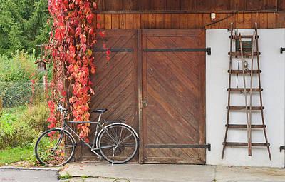 Photograph - Autumn Everywhere by Felicia Tica