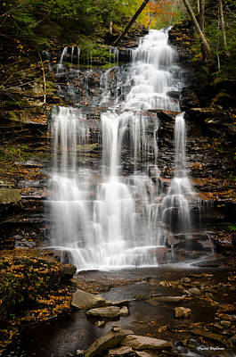 Photograph - Waterfall At Ricketts Glen by Crystal Wightman