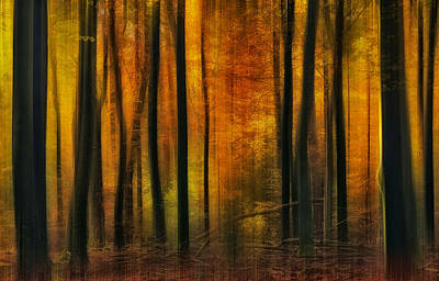 Blur Photograph - Autumn Falls by Jan Paul Kraaij