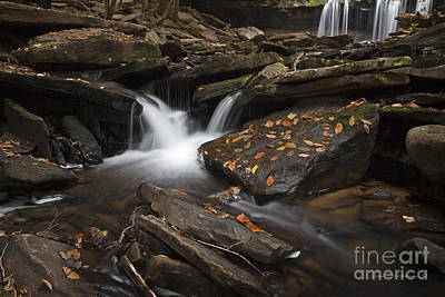 Photograph - Autumn Falls by John Stephens