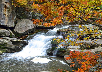Tremendous Photograph - Autumn Falls by Frozen in Time Fine Art Photography