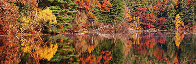 Photograph - Autumn Fanfare by Leda Robertson