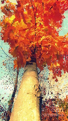 Photograph - Autumn Fantasy 1 by France Laliberte