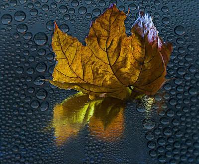 Photograph - Autumn Fantasy 2 by Vladimir Kholostykh