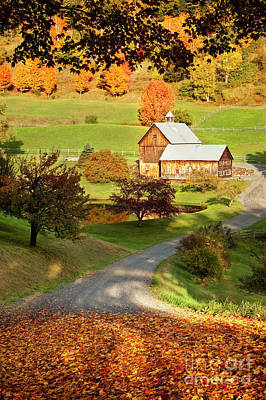 Photograph - Autumn Farm by Brian Jannsen