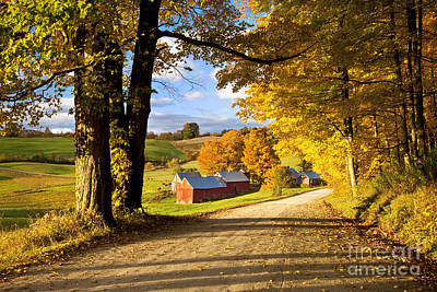 Maple Tree Photograph - Autumn Farm In Vermont by Brian Jannsen