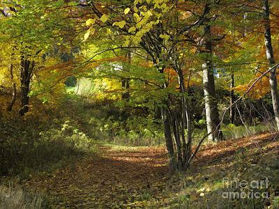 Photograph - Autumn Feeling by Lutz Baar