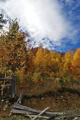 Photograph - Autumn Fence by Bogdan M Nicolae