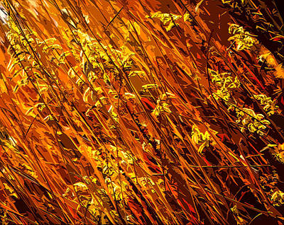 Bales Mixed Media - Autumn Field by Brian Stevens