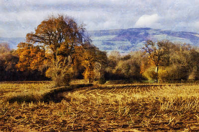 Photograph - Autumn Fields by Ian Mitchell