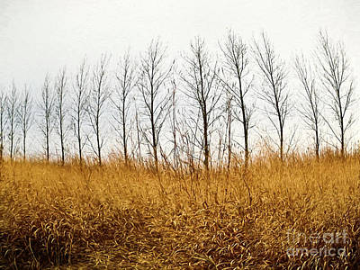 Photograph - Autumn Fields Of Tall Grass/ Digital Painting by Sandra Cunningham