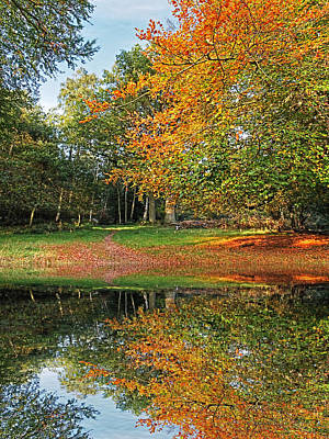 Photograph - Autumn Fire By The Lake by Gill Billington