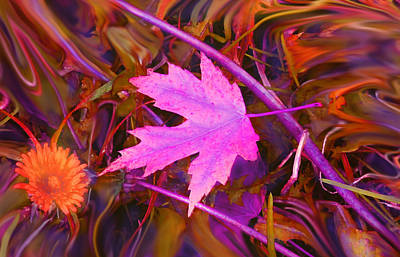 Digital Art - Autumn Fire by Ian  MacDonald