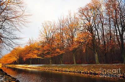 Photograph - Autumn Fire by Randi Grace Nilsberg