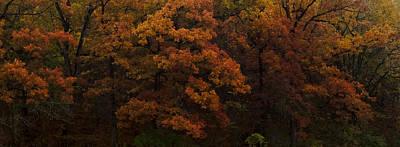 Photograph - Autumn Fire by Ryan Heffron