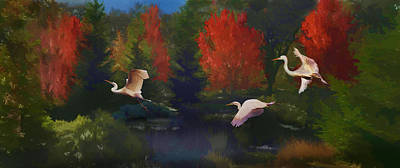 Photograph - Autumn Flight by Melinda Hughes-Berland