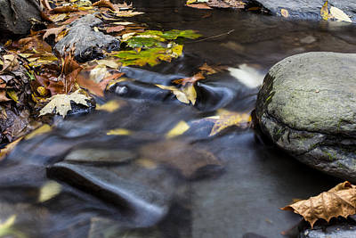 Photograph - Autumn Flow by Andrew Pacheco