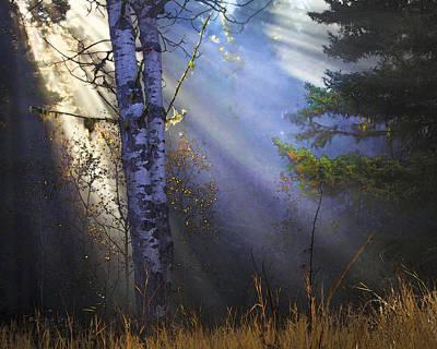 Fir Trees Photograph - Autumn Fog With Sun Rays by Theresa Tahara