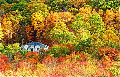 Autumn Foliage Kinnelon Nj Original