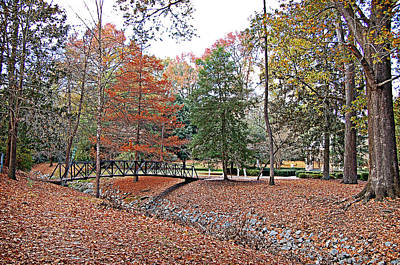 Photograph - Autumn Footbridge by Linda Brown