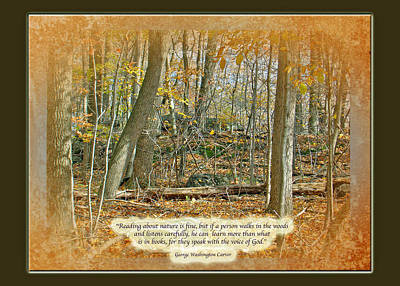 George Washington Carver Photograph - Autumn Forest - George Washington Carver Quote by Mother Nature