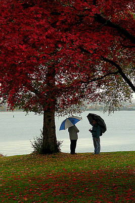 Photograph - Autumn Friends by Brian Chase