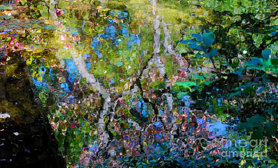 Botanic Photograph - Autumn Garden Reflections by Nancy Mueller