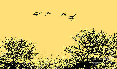 Photograph - Autumn Geese In Flight by Nina Silver