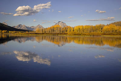 Photograph - Autumn Glory In The Tetons by Jack Bell