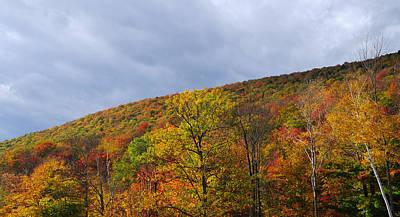 Photograph - Autumn Glory by Luke Moore