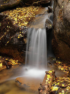 Photograph - Autumn Gold And Waterfall by Leland D Howard