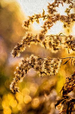 Weed Digital Art - Autumn Goldenrod - Paint  by Steve Harrington