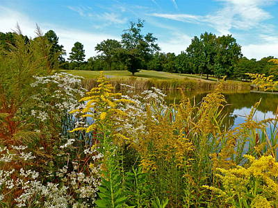 Photograph - Autumn Golf by Jean Wright