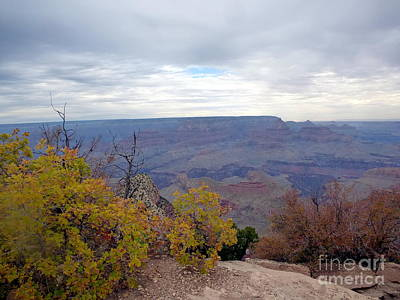 Photograph - Autumn Grand Canyon by Marlene Rose Besso
