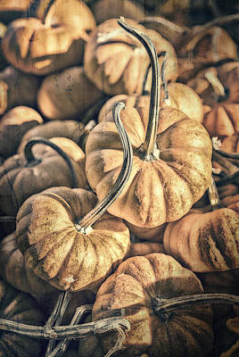 Farmstand Photograph - Autumn Grunge by Caitlyn  Grasso